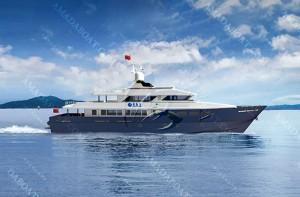 3A3820b(天 琴)近海高速工作船